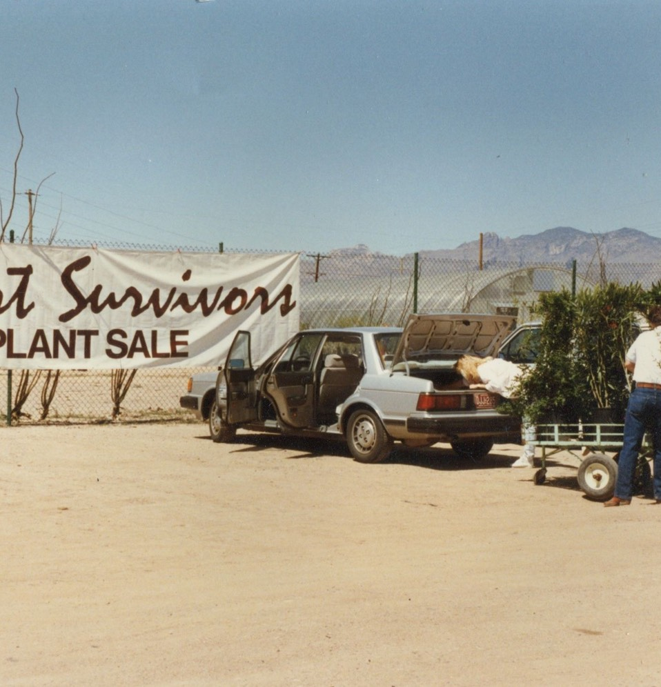 One of our early plant sales from the late 1980's